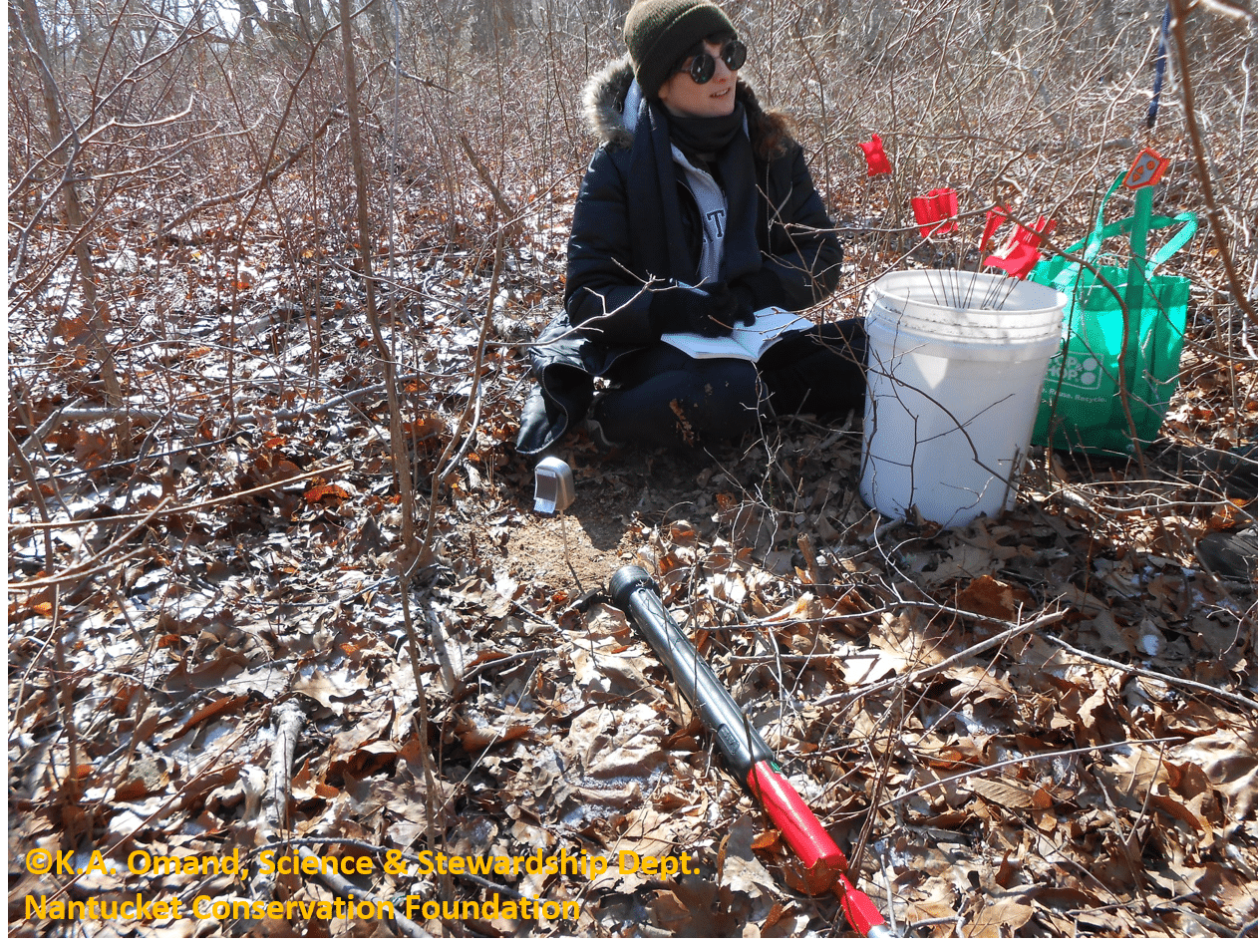 Adrianna taking soil samples at the north plot for soil testing later in the lab.
