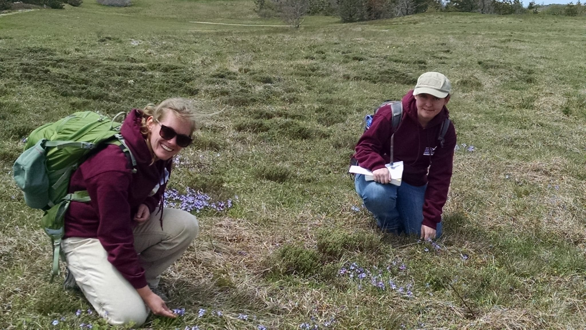 Kaitlyn and Natalie examining bird's foot violets at Tupancy Links