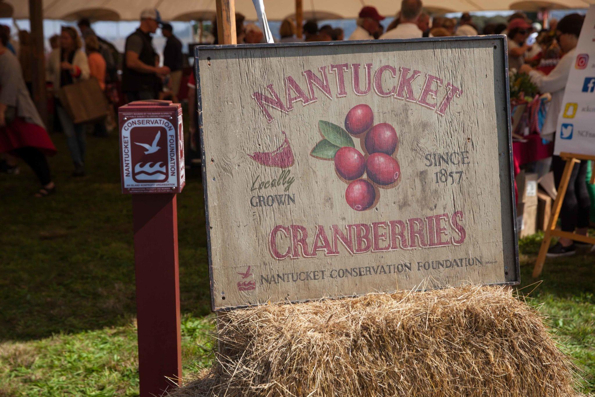 Cranberry Fest 2017 0094