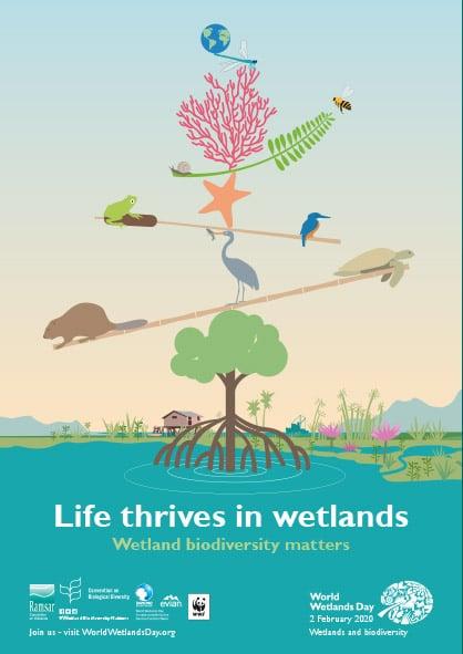Wetland Biodiversity Matters, World Wetlands Day 2020