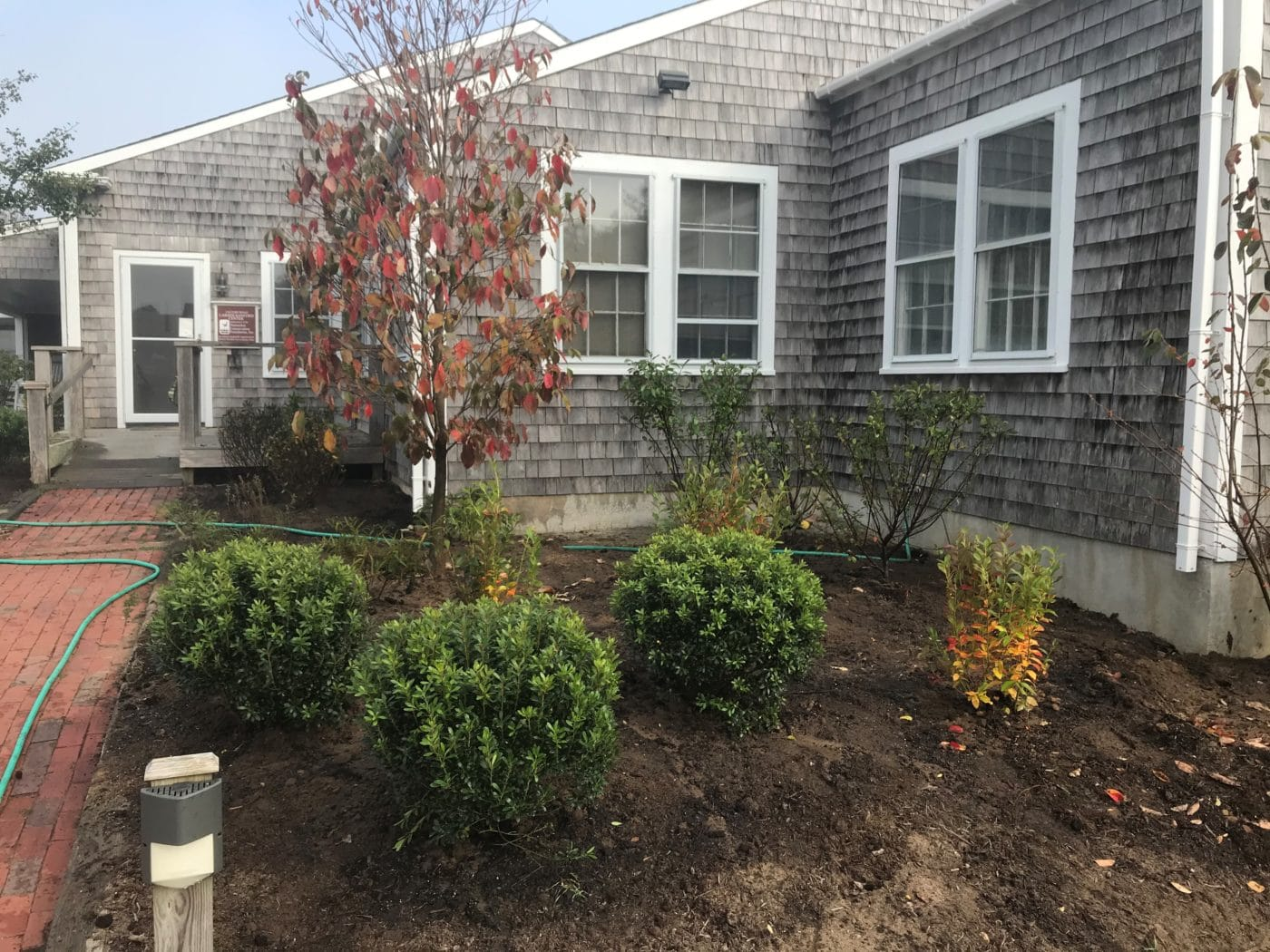 A Native Landscaping Makeover at NCF