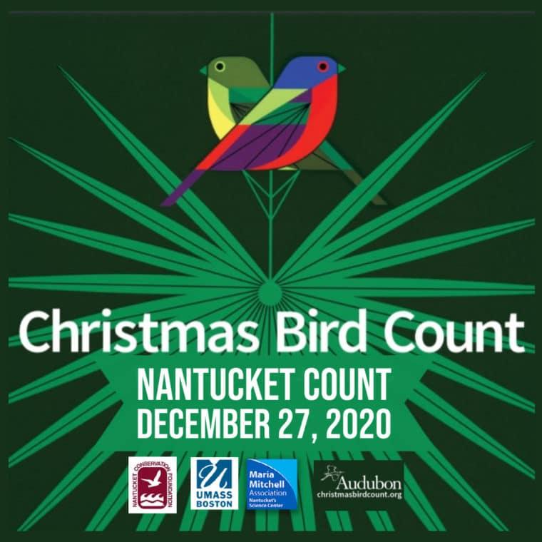 Christmas Bird Count Small Ad 2
