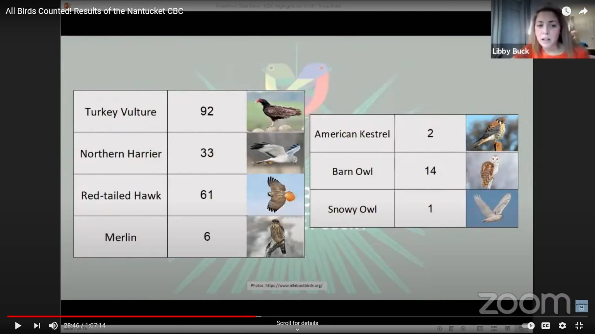 2020 Christma Bird Count Results