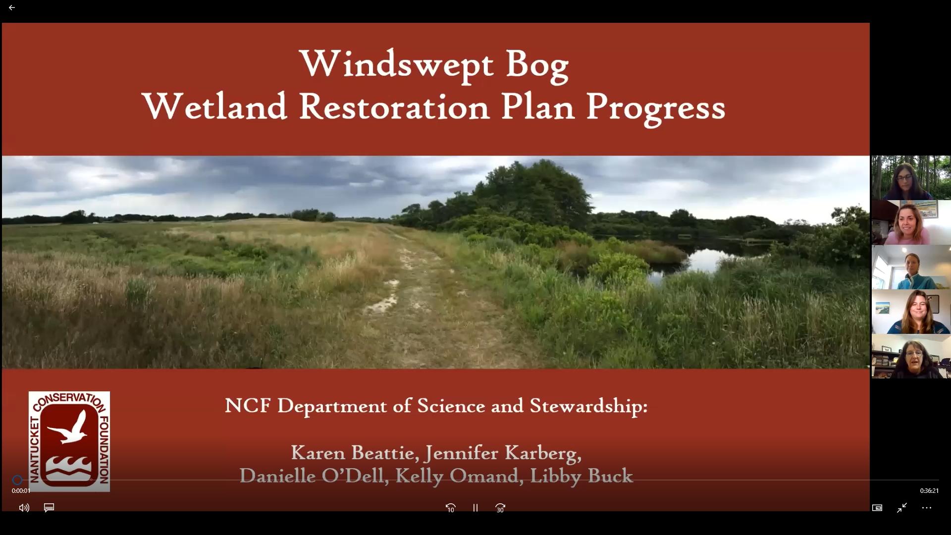 Windswept Presentation