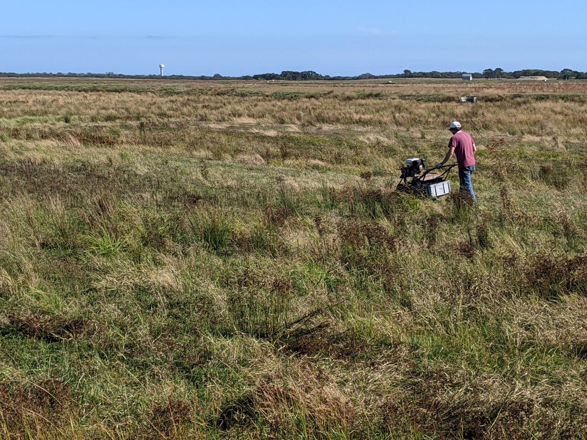 Nick Dry Picking Bog #2