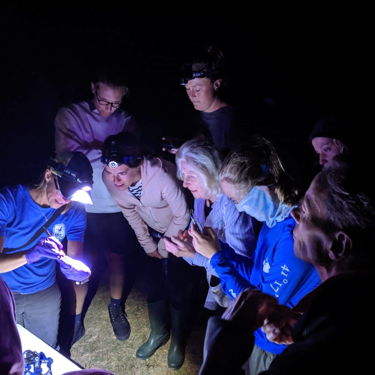"""Science for NCF Members """"Bat Encounter"""" Event"""