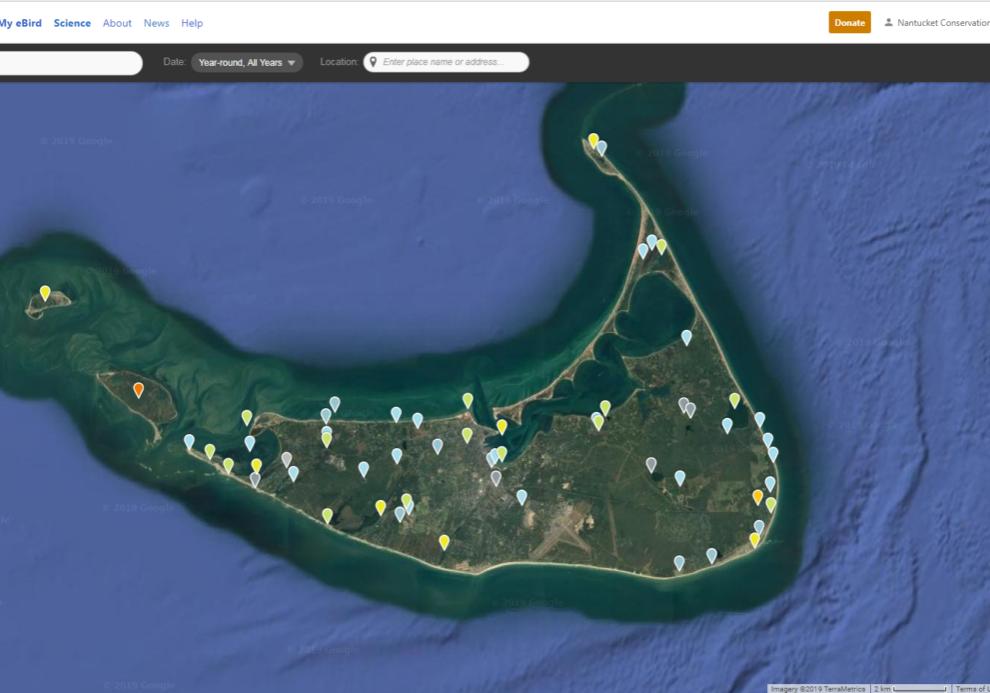 Ebird Nantucket Map