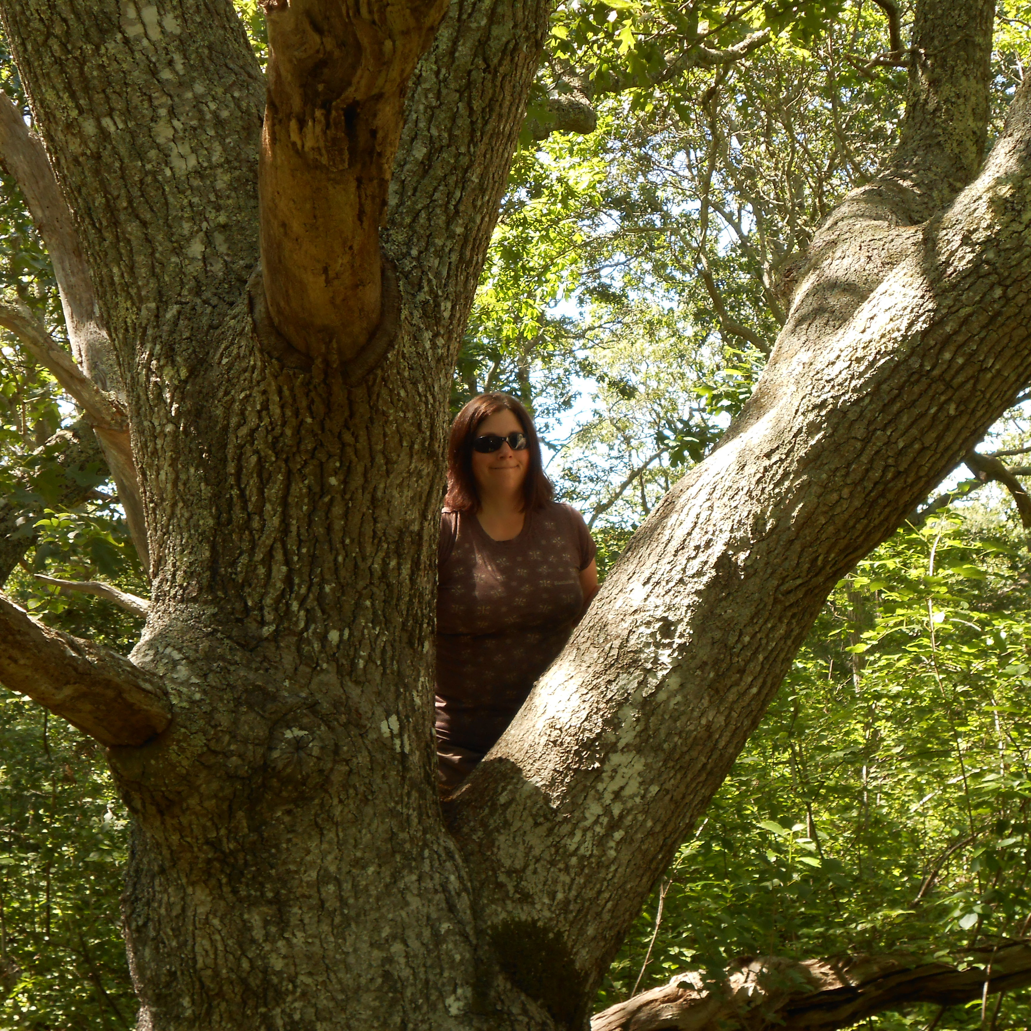 Kelly And Hydra, SqSwamp,EMW (1)