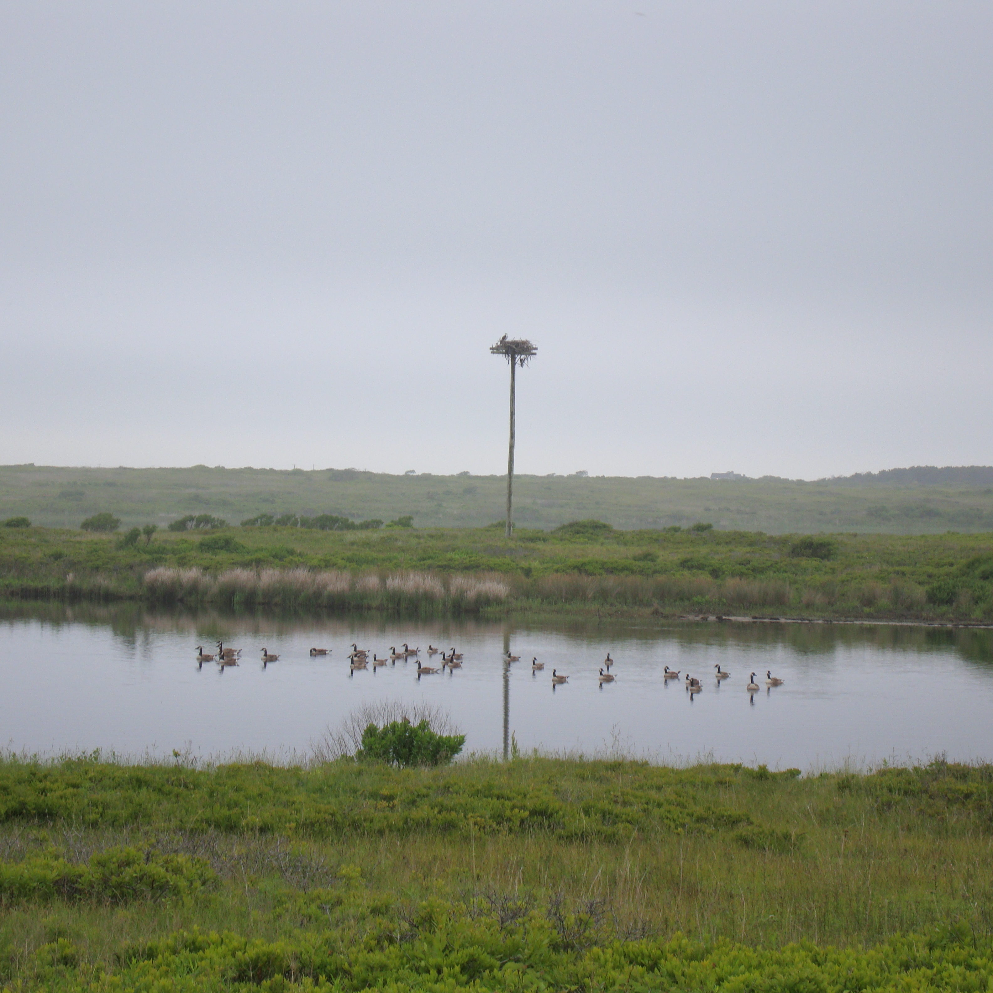 West Hummock Pond (aka Clark's Cove)