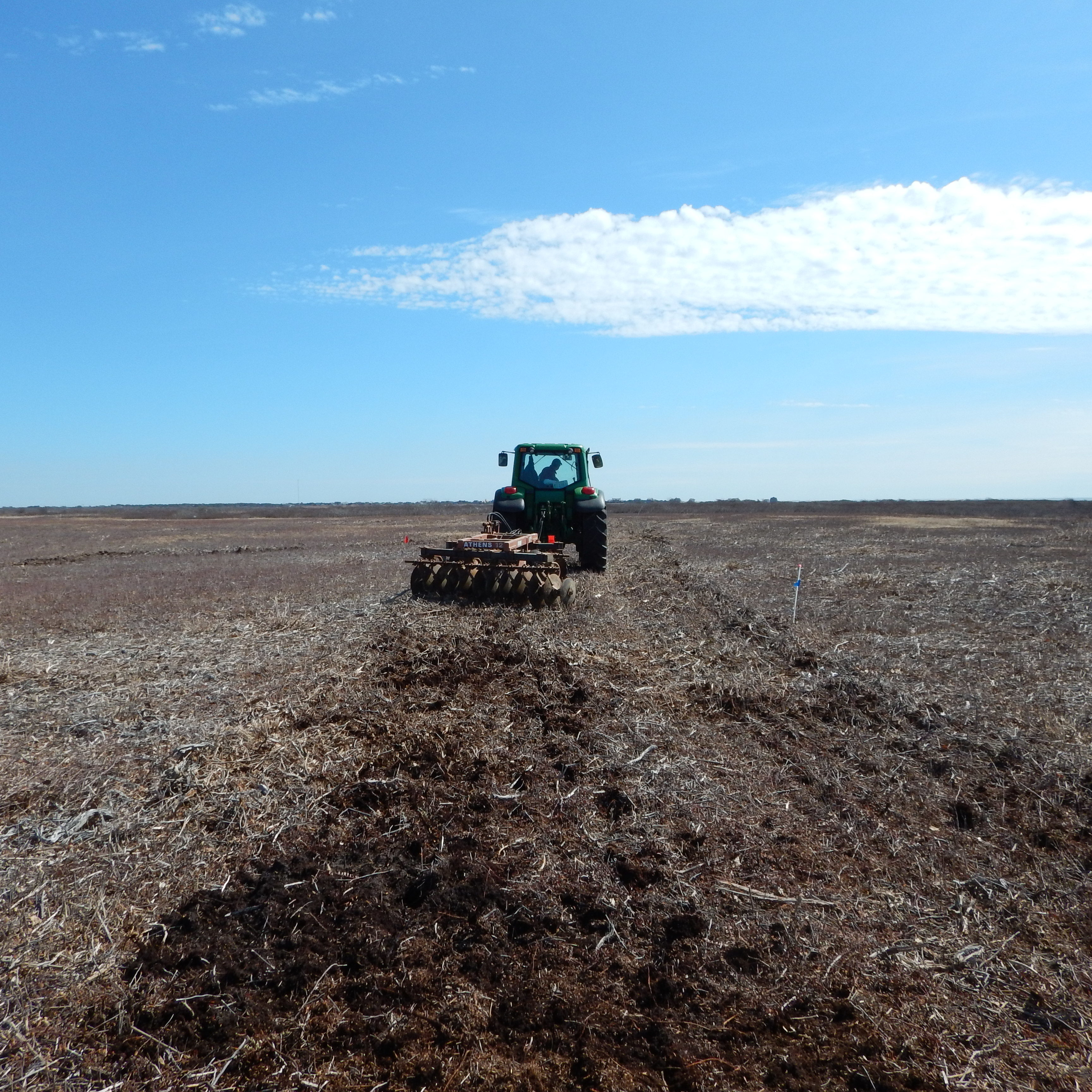 Disk harrowing to restore grassland habitat